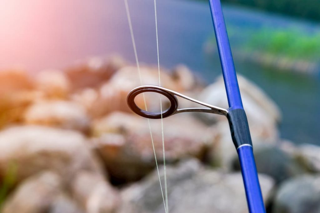 Fishing pole with a fluorocarbon fishing line